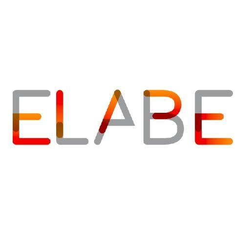 """ELABE poursuit sa croissance sur le territoire du """"Conseil Objectivé"""""""
