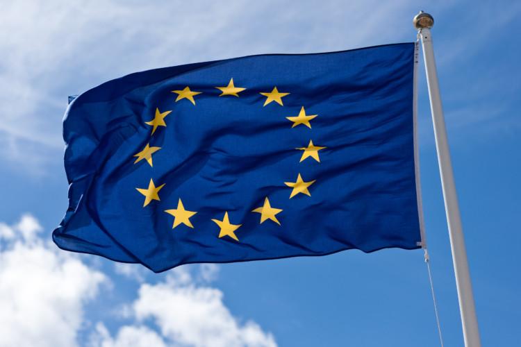 Européennes : la liste RN (25%) devance la liste LREM/MoDem (22.5%)